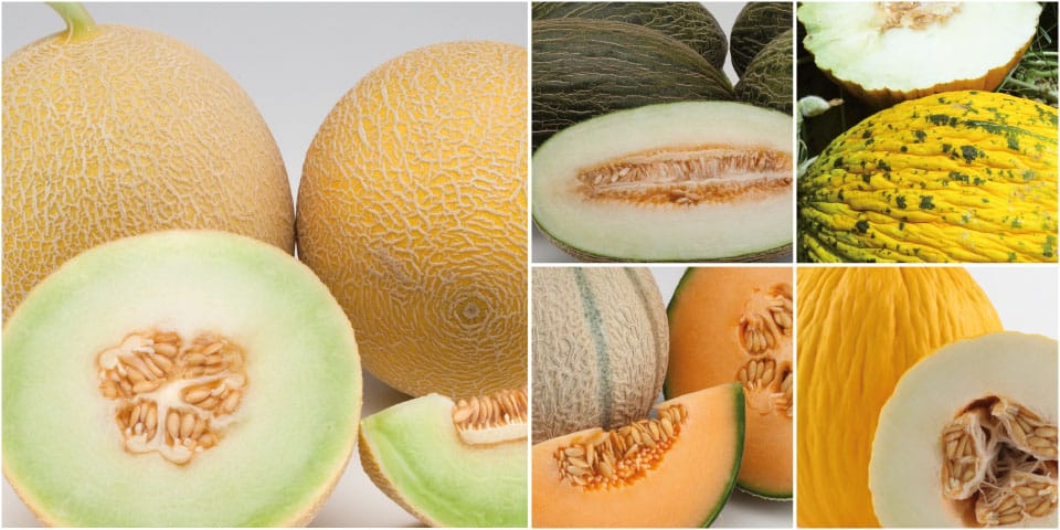 Eat melon separate