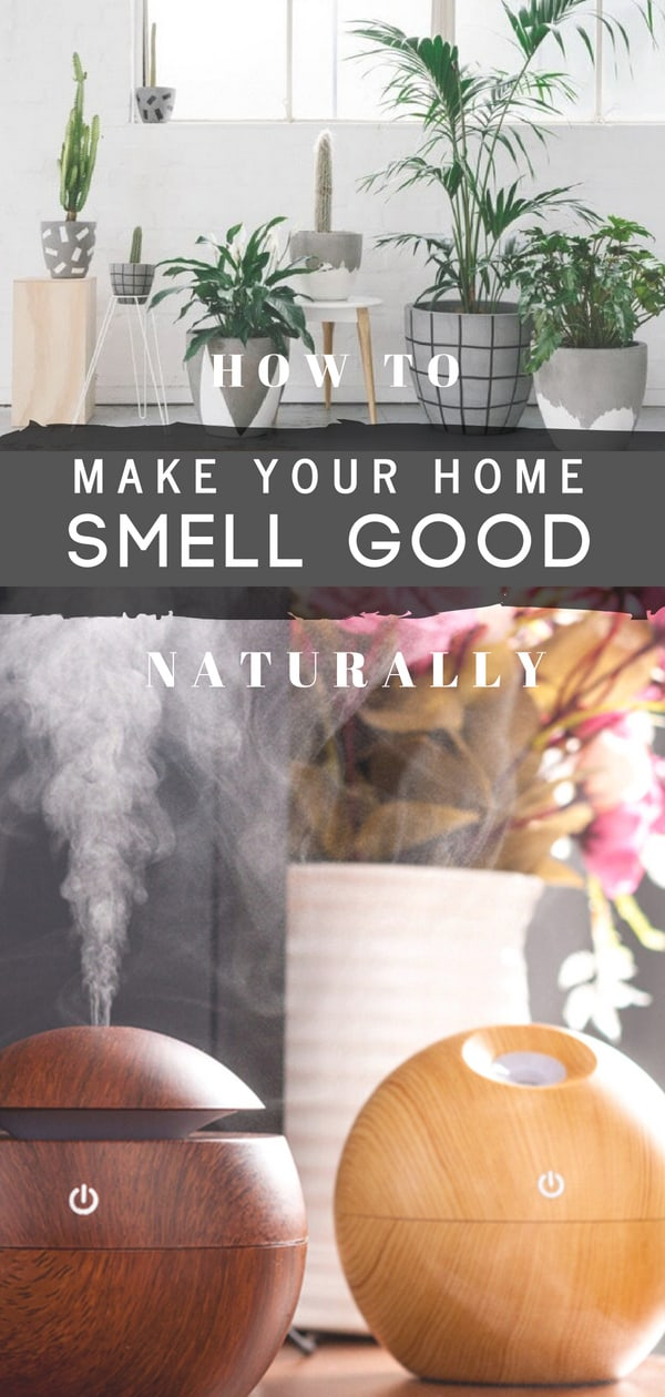 Learn how to make your house smell good at the core and all the time. Natural ways to keep your house smell good without resorting to chemicals that just cover the smell. Use plants, diffuser, natural oils and candles for a nice pleasant smell. #homesmells  #cleaninghacks  #cleaningtips #householdtips #cleaningtips #smellgood #homehacks