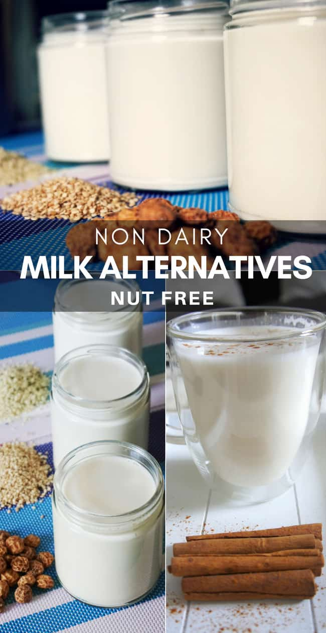 Learn how to make non dairy milk alternatives | 3 Nut Free Non Dairy Milk Recipes. These homemade non dairy milk alternatives are a great source of plant based protein, carbs, fat, vitamins and minerals. Suitable for babies, toddlers and vegans. #veganmilk #plantbasedmilk #nondairymilk
