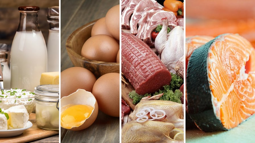 Cure chronic diseases naturally: what animal products to eat