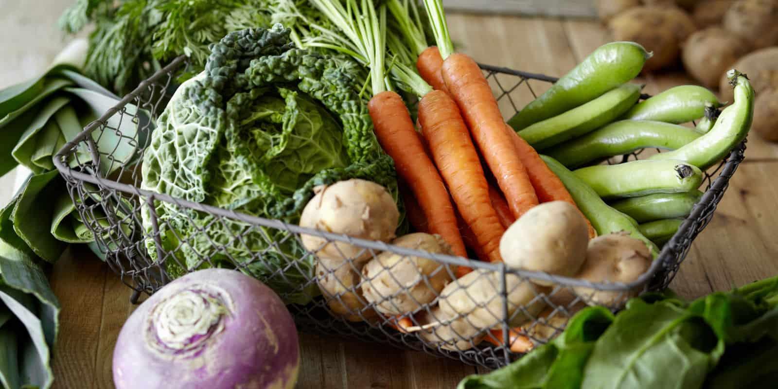 The Best Diet For Healing Chronic Illnesses: best vegetables for a gut healing elimination diet